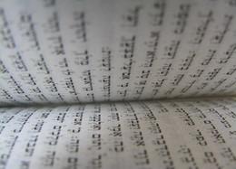Dvar Torah: Caleb Gruber