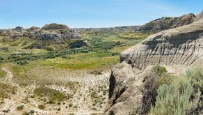 Prêts à remonter le temps? Direction le Dinosaur Provincial Park