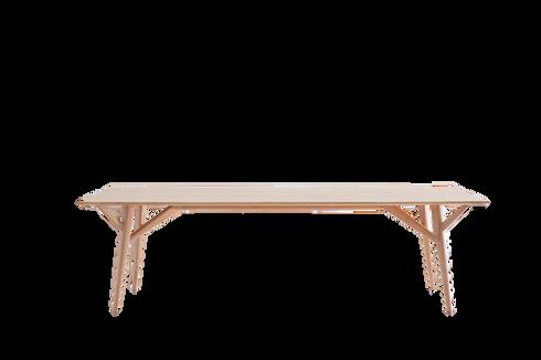 mesa amazônia