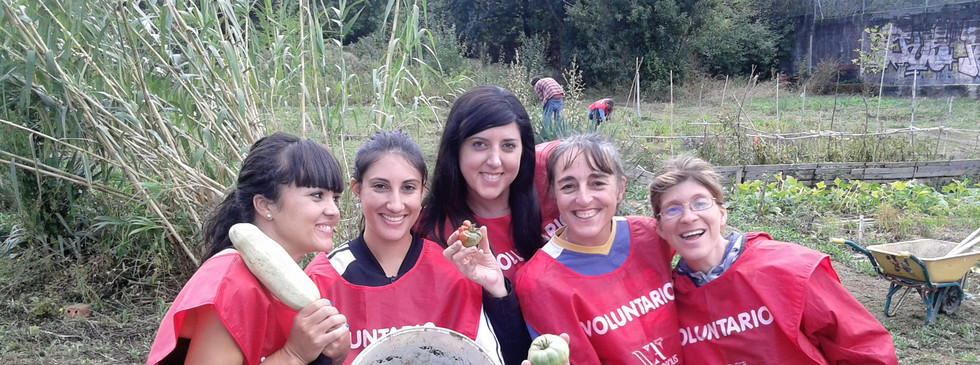 Voluntariado en una huerta ecologica