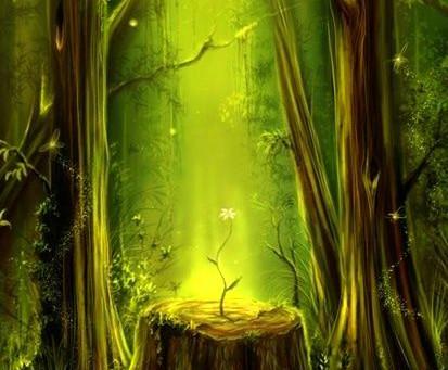 5 naturalnych zaklęć magicznych