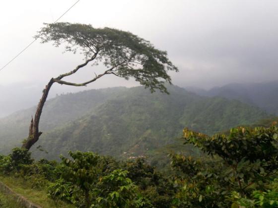 On the Road to San Rafael Pie de la Cuesta, Guatemala