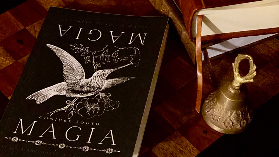 Magia Magia: Invoking Mexican Magic (signed by authors)