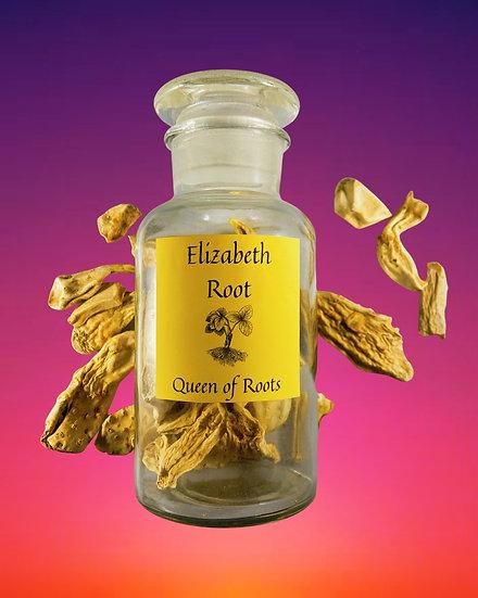 Elizabeth Root
