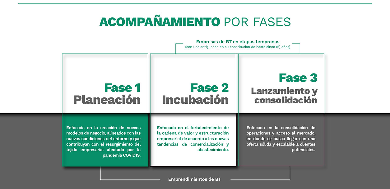 MincienciasWeb2020-04.jpg