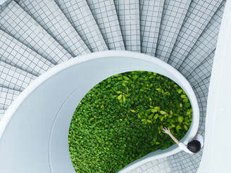 "5 Simple ways to ""greenify"" your business"