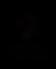 SN_Certified_black_ART.PNG