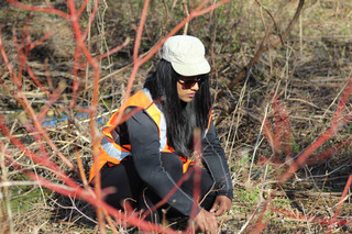 Diversity strengthens forests