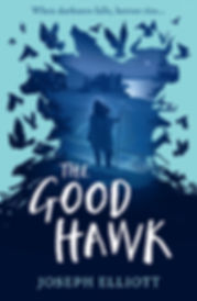The Good Hawk Cover - High Res.jpg