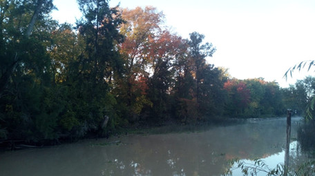 Vista del Río Toro en del delta de Tigre