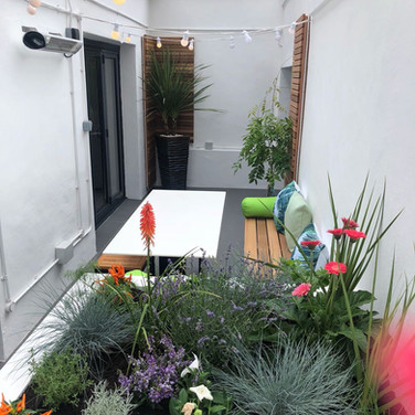The transformed view towards the bedroom end of the garden.