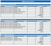 Billing Summary Report.png
