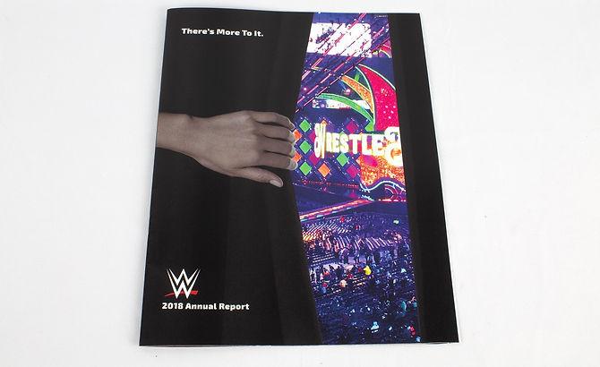 JaanSingh_WWEAnnualReport-1-min_edited.j
