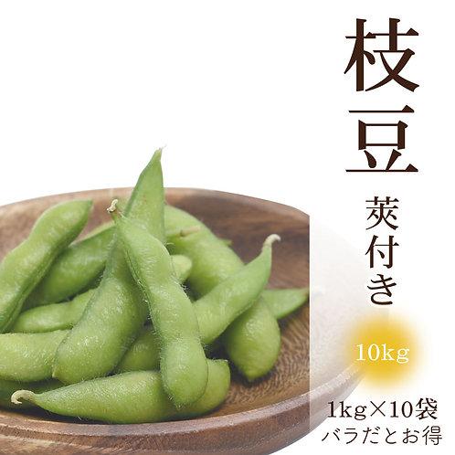 莢付き枝豆(10kg)