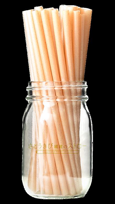 sugarcanefiber sugarcanefiber-straw photo | sugarcanefiber.jp  | さとうきび繊維のストロー| 生分解性ストロー| サスティナブル | エコストロー