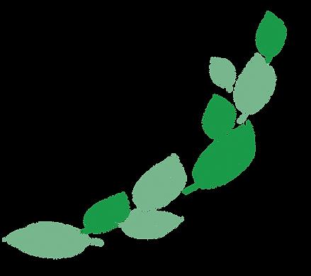 p-leaf.png