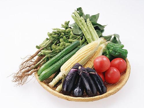 野菜詰め合わせ10kg