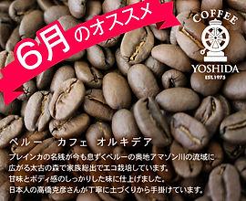 6月のオススメ豆.jpg
