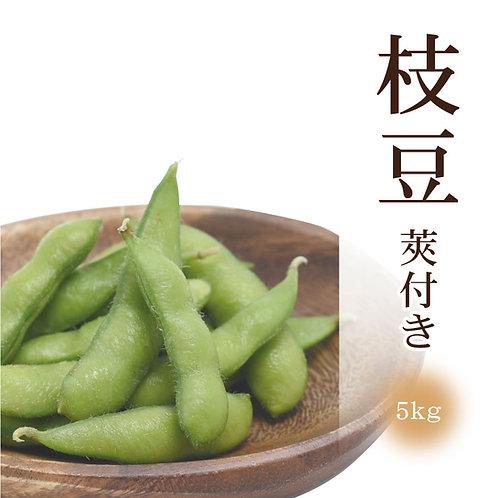 莢付き枝豆(5kg)