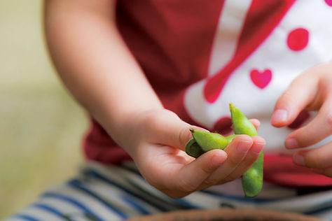 子供たちが莢をしゃぶるように食べてもいいように、着莢後は農薬散布を一切行っておりません。