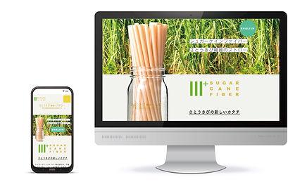 web13.jpg