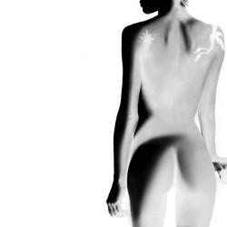 Light+my+body+up