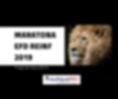 Post face maratona efd reinf 2019.png