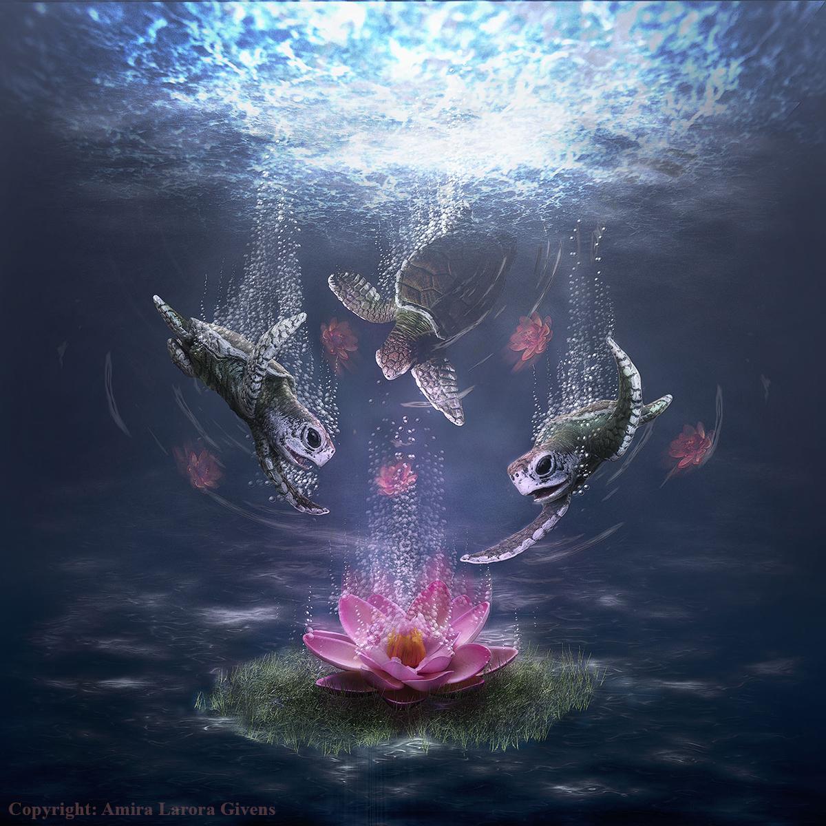 lotusfinal