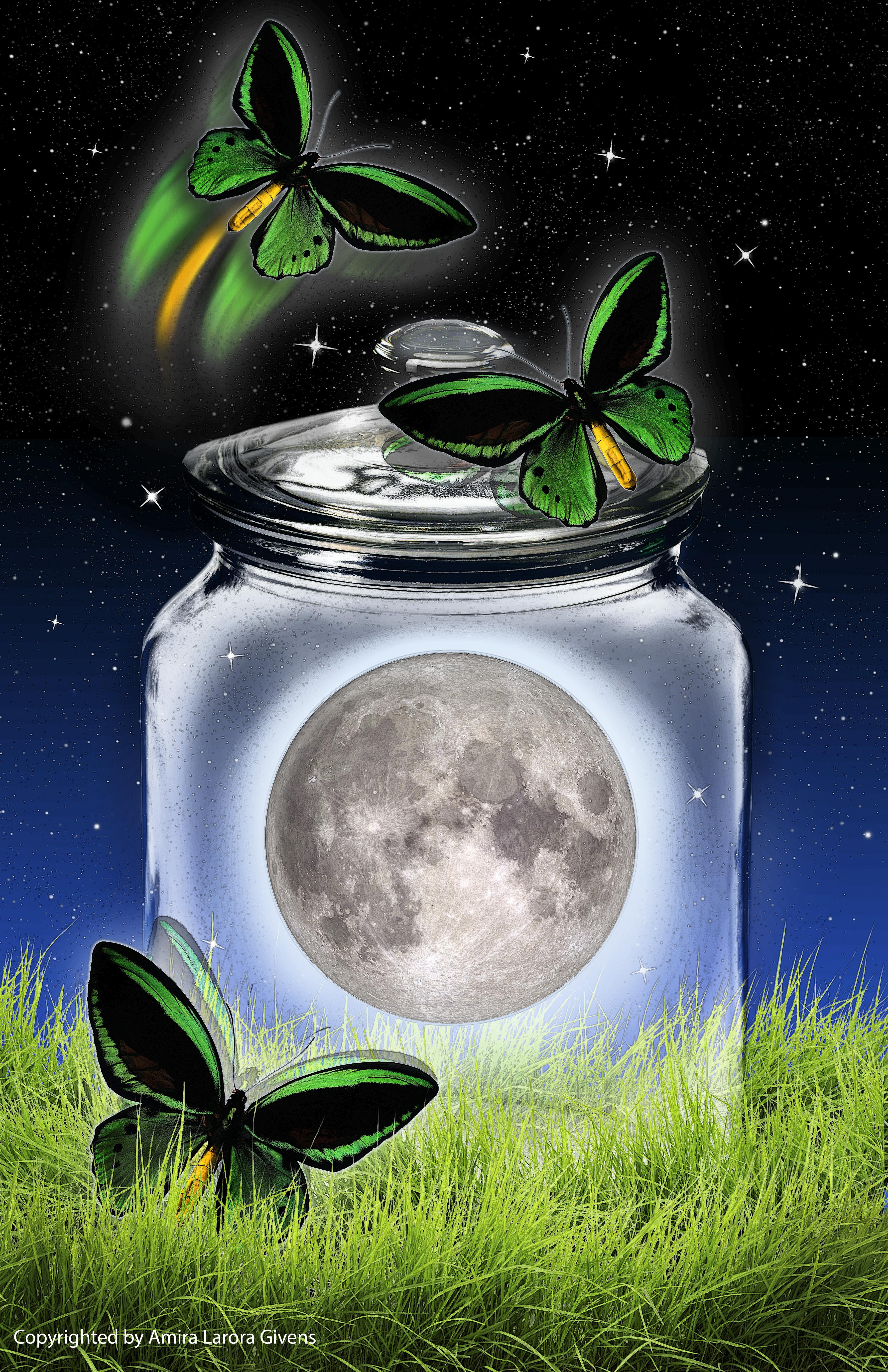 """ Moon in a Jar"" 2019"