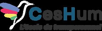 logo-ceshum-2019.png