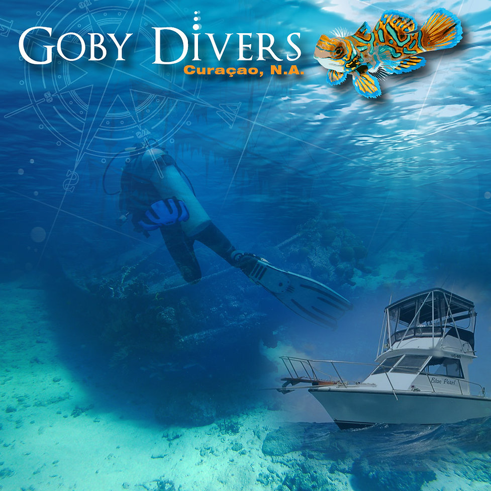 Goby Divers, Curaçao offers guided shore and boat dives, PADI certified courses, scuba equipment rental. Andhiela van Hoof-Buso and Ima will show you the best open-water diving on the island. Located at Veneto Holiday Beach Hotel, Pater Euwensweg