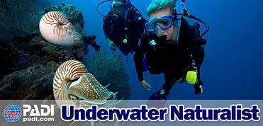PADI Underwater Naturalist info page