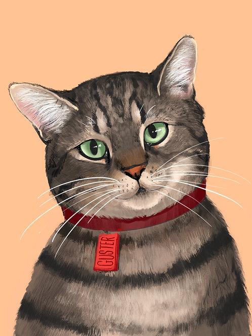 Swatch Pet Portraits