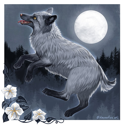 Full-Body Animal Illustration