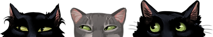 CatsLookingLeft.png