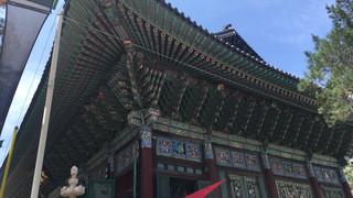 韓国の感染症法の翻訳を公開します