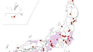 本プロジェクトメンバーの井上悠輔准教授と大隈楽さんの論文が掲載されました