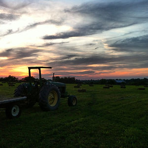 Gallery- Tractor.JPG