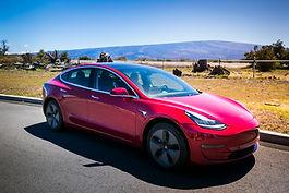 Tesla 3 wild orchid tours.jpg