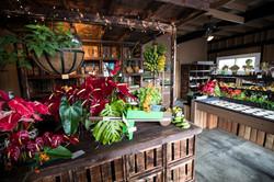 Local Farm Store