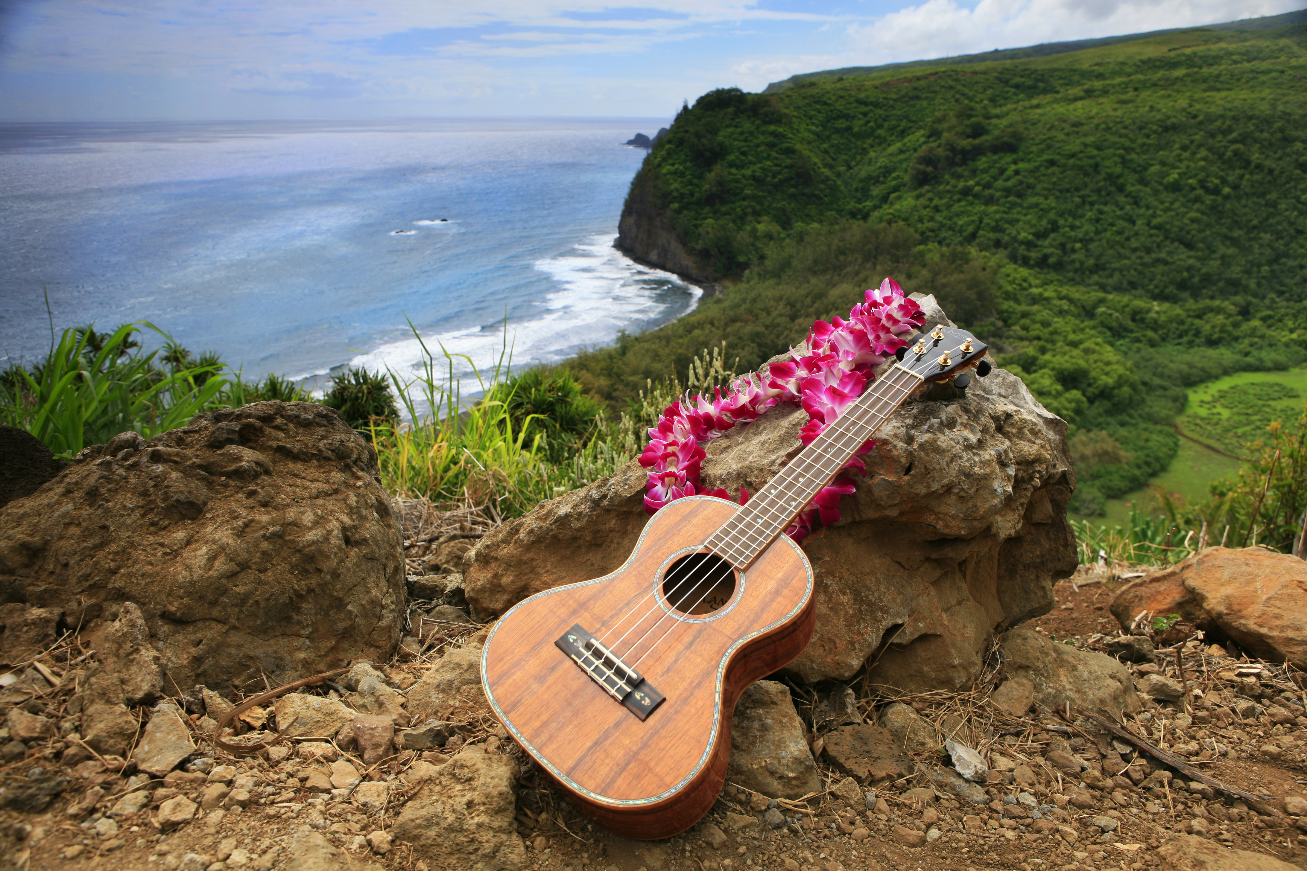 Wild Orchid Tours/ Pololu