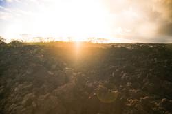 New Lava Field