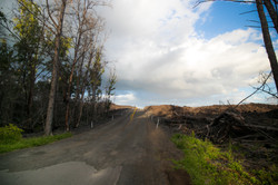Road carved to the devastation zone