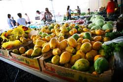 Hilo.Market