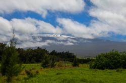 View from Waimea on Mauna Kea with snow.