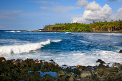 Tropical Puna Coast