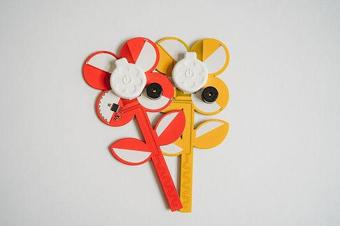 Power Flower June 2020 - Emily Tyler Pho