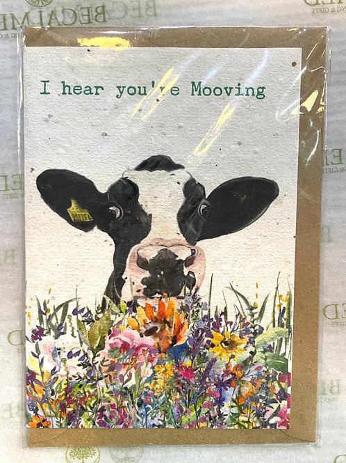 Plantable 'I Heard You're Mooving' Card