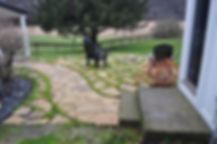 Path & Chairs w Field.JPG