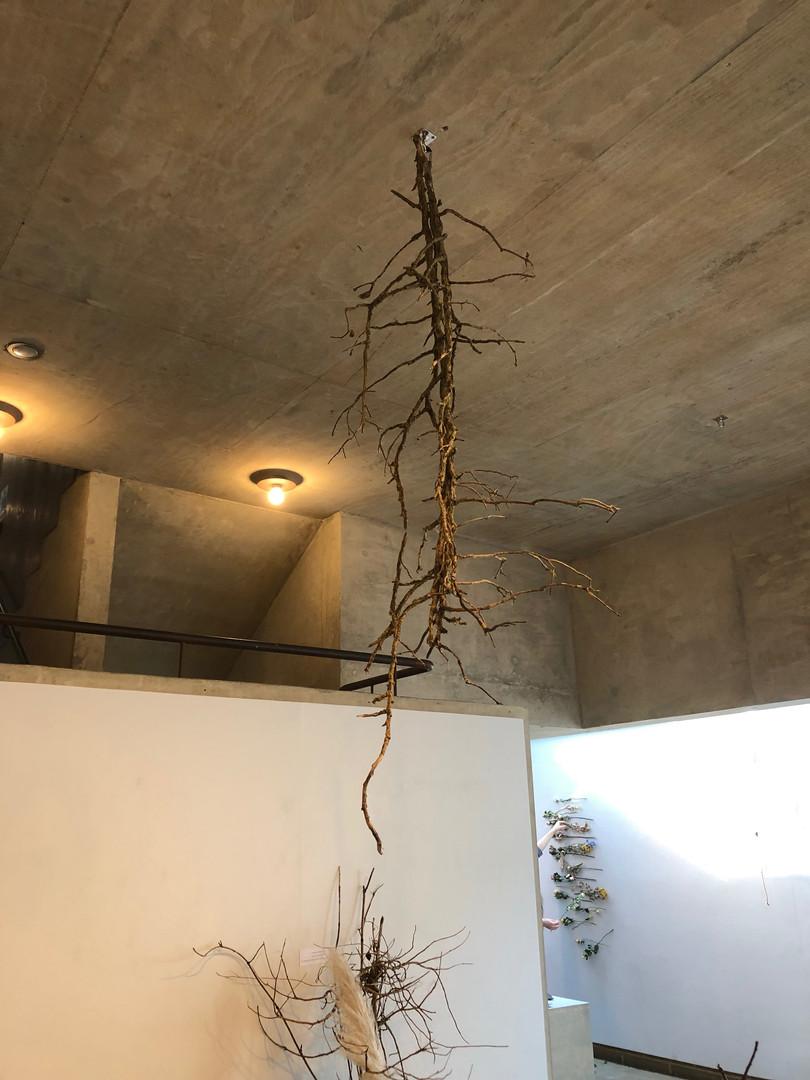 Installation by Jinjoon Lee